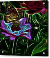 Butterflies And Flowers IIi Acrylic Print