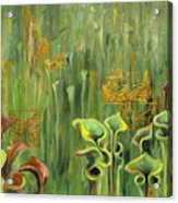 Butterflies In The Bog Acrylic Print
