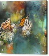 Butterflies On A Spring Day Acrylic Print