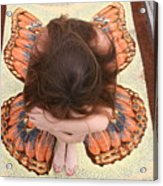 Butterfly 053 Acrylic Print