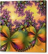 Butterflies 2 Acrylic Print