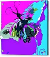 Butterfly Art By Lisa Kaiser Acrylic Print