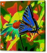 Butterfly Blues Acrylic Print