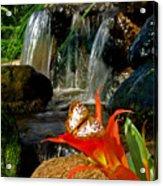 Butterfly Brook Acrylic Print