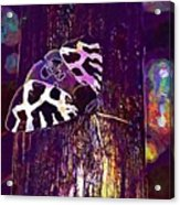 Butterfly Brown Bear Drawing Wing  Acrylic Print
