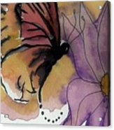 Butterfly Collecting Acrylic Print