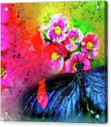 Butterfly Color Explosion Acrylic Print