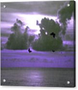 Butterfly Dreams And A Purple Sky Acrylic Print
