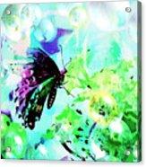 Butterfly Fantasty Acrylic Print