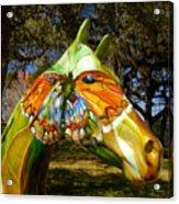 Butterfly Horse Ocala Florida Acrylic Print