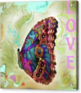 Butterfly In Beige And Teal Acrylic Print
