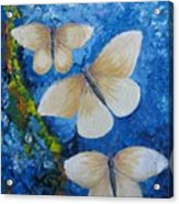 Butterfly In Blue 4 Acrylic Print
