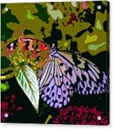 Butterfly In Garden Acrylic Print