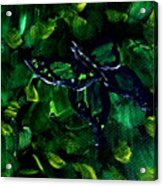 Butterfly In The Bush Acrylic Print