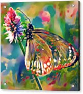 Butterfly Of Paradise 1 Acrylic Print