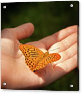 Butterfly On A Childs Hand Acrylic Print