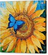 Butterfly On Sunflower Acrylic Print