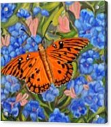 Butterfly Orange Acrylic Print