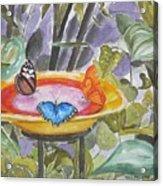Butterfly Sanctuary At Niagara Falls Acrylic Print