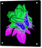Butterfly Sitting On A Rose Acrylic Print