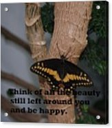 Butterfly Thing Of Beauty Acrylic Print