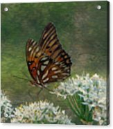 Butterfly Waters Acrylic Print