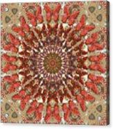 Butterfly Wheel Grey Acrylic Print