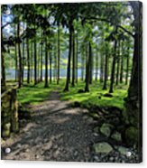 Buttermere Woods Acrylic Print