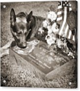 Buy A Print. Show Your Support For Reading K9 Police.  Willow Street Pictures.  Acrylic Print