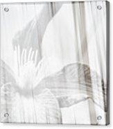 Bw Clematis Acrylic Print