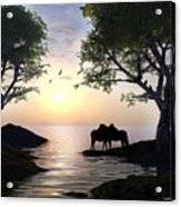 By Sunset Light Acrylic Print