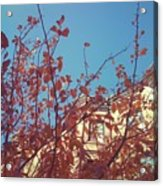 By The Autumn Tree 2 Acrylic Print