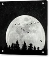 By The Light Of The Silvery Moon - Birds  Acrylic Print
