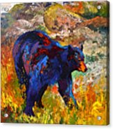 By The River - Black Bear Acrylic Print