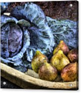 Cabbage And Figs Acrylic Print by Sari Sauls