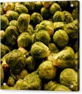 Cabbage Family Acrylic Print