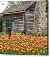 Cabin In The Tulips Acrylic Print