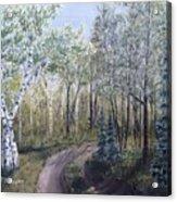 Cabin Road Acrylic Print