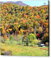 Cabin Surrounded By Color Acrylic Print