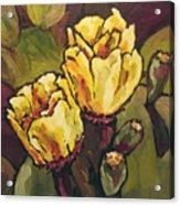 Cactus Blooms Acrylic Print