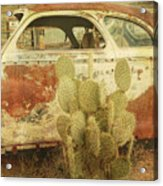 Cactus Car Acrylic Print