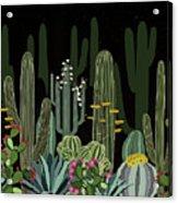 Cactus Garden At Night Acrylic Print