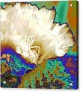 Cactus Moon Flower Acrylic Print