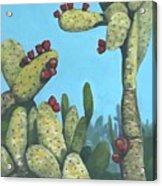 Cactus On Vicky Acrylic Print