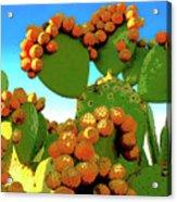 Cactus Pears Acrylic Print