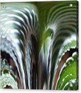 Cactus Predator Acrylic Print
