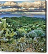 Cactus Rabbit Acrylic Print