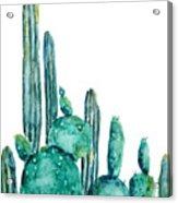 Cactus Watercolor 1 Acrylic Print
