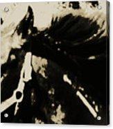 Caeser's Assassin Acrylic Print