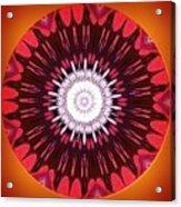 Caim Acrylic Print